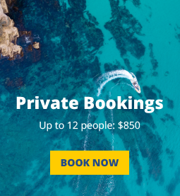 Private Booking Button